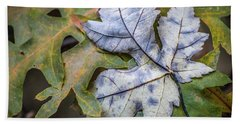 Beach Towel featuring the photograph Maple And Oak by Michael Arend
