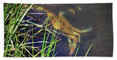 Beach Towel featuring the photograph Maryland Blue Crab Lurking In An Assateague Marsh by Bill Swartwout Fine Art Photography