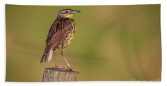 Beach Towel featuring the photograph Meadowlark On Post by Tom Claud