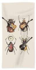 Beetle Beach Towels