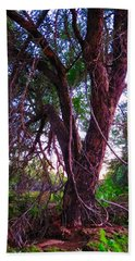 Beach Towel featuring the photograph Mesquite By The Wash by Judy Kennedy