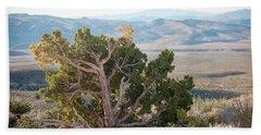 Mesquite In Nevada Desert Beach Sheet