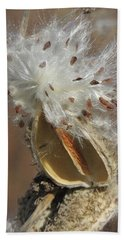 Milkweed Burst Beach Sheet