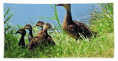 Mom And Baby Ducklings Beach Sheet