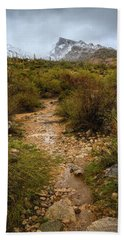 Moody Creekbed  Beach Towel