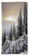 Moraine Lake Winter Trees Beach Towel
