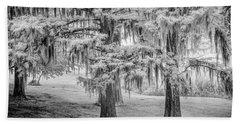 Moss Laden Trees 4132 Beach Sheet