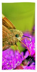 Moth On Purple Flower Beach Towel