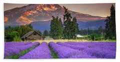 Mount Hood Lavender Field  Beach Towel
