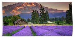 Mount Hood Lavender Field  Beach Sheet
