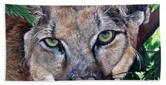Mountain Lion Portrait Beach Towel