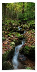 Mountain Stream - Blue Ridge Parkway Beach Towel