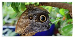 Mournful Owl Butterfly Upside Down Beach Towel