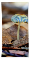 Mushroom Under The Oak Tree Beach Sheet
