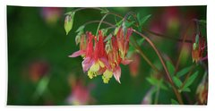 Native Columbine Beach Towel