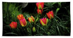 Night Tulips Beach Sheet