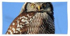 Northern Hawk-owl Beach Towel