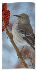 Beach Towel featuring the photograph Northern Mockingbird by Debbie Stahre