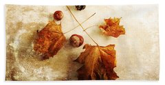 Beach Towel featuring the photograph November Mood by Randi Grace Nilsberg