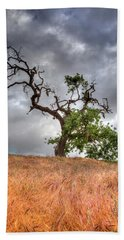 Beach Towel featuring the photograph Old Oak Tree by John Rodrigues