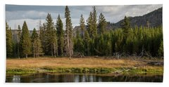 Beach Towel featuring the photograph On The Banks Of The Madison River by Lon Dittrick