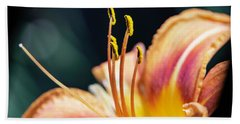 Orange Day Lily Stamen Beach Towel