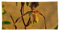 Orchid Study Eight Beach Towel