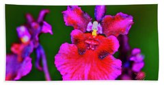 Orchid Study Three Beach Towel