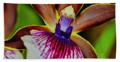 Orchid Study Two Beach Towel