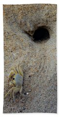 Beach Towel featuring the photograph Outer Banks Ghost Crab by Lora J Wilson