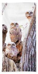 Owl Trio Standing Guard Beach Towel