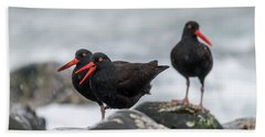 Oystercatchers In The Rain Beach Towel