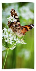 Painted Lady II Beach Towel