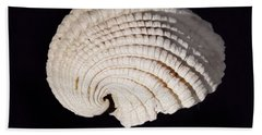 Painted Shell No. 3 Beach Towel