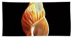 Painted Shell No. 8 Beach Towel