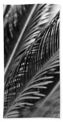 Palm Beach Sheet