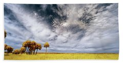 Palm Trees In Myakka Park Beach Towel