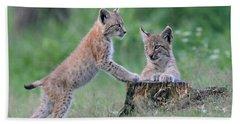 Playful Kitten... Lynx Beach Towel