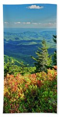 Parkway Tree Beach Towel