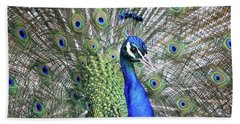 Peacock Portrait Beach Towel