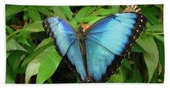Peleides Blue Morpho Butterfly Beach Towel