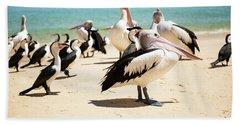 Beach Towel featuring the photograph Pelicans During The Day by Rob D Imagery