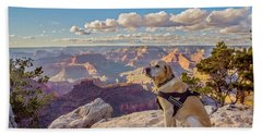 Beach Towel featuring the photograph Photo Dog Jackson At The Grand Canyon by Matthew Irvin