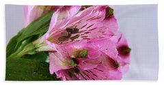 Pink Alstroemeria-4 Beach Towel