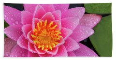 Beach Towel featuring the photograph Pink Petals In The Rain  by Jeff Sinon