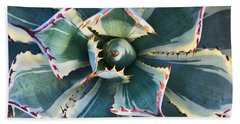 Pinwheel Succulent Beach Towel