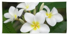 Pleasing Plumeria Beach Towel