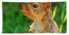 Pondering Squirrel Beach Towel