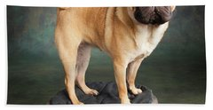 Portrait Of A Pug Mixed Dog Beach Towel