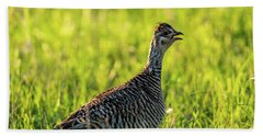 Prairie Chicken Hen Beach Towel